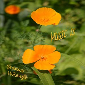 300px_album_musicis